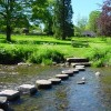 Stepping Stone April